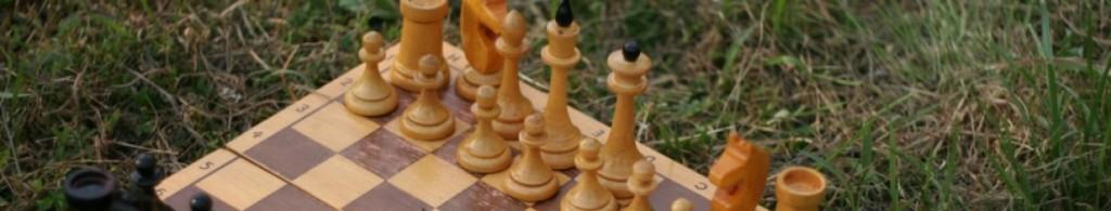 шахматы Екатеринбург