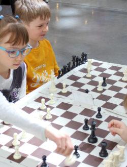 Кружок шахмат в Екатеринбурге