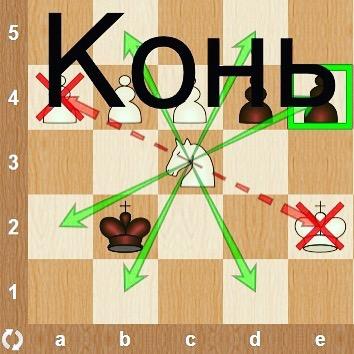 Конь в шахматах