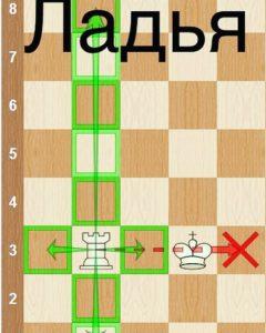 Ладья шахматы