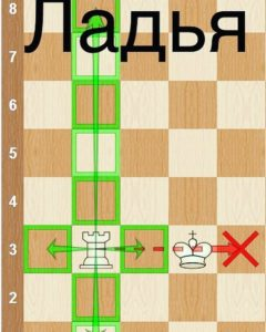 Ладья в шахматах