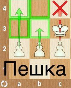 Пешка шахматы