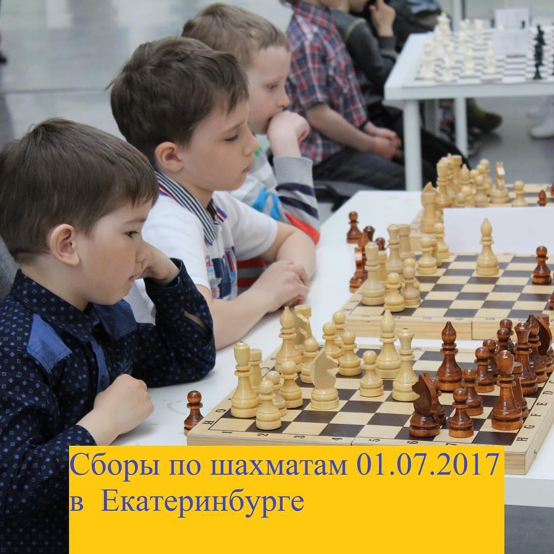 Сборы по шахматам