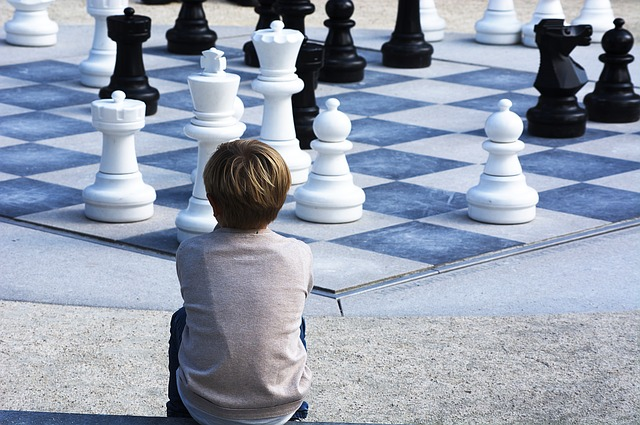Психология шахматной борьбы