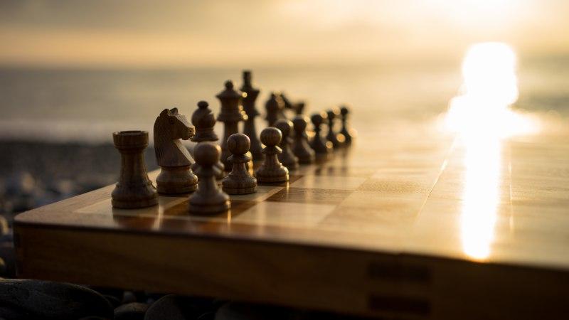 Сочи турнир шахматы