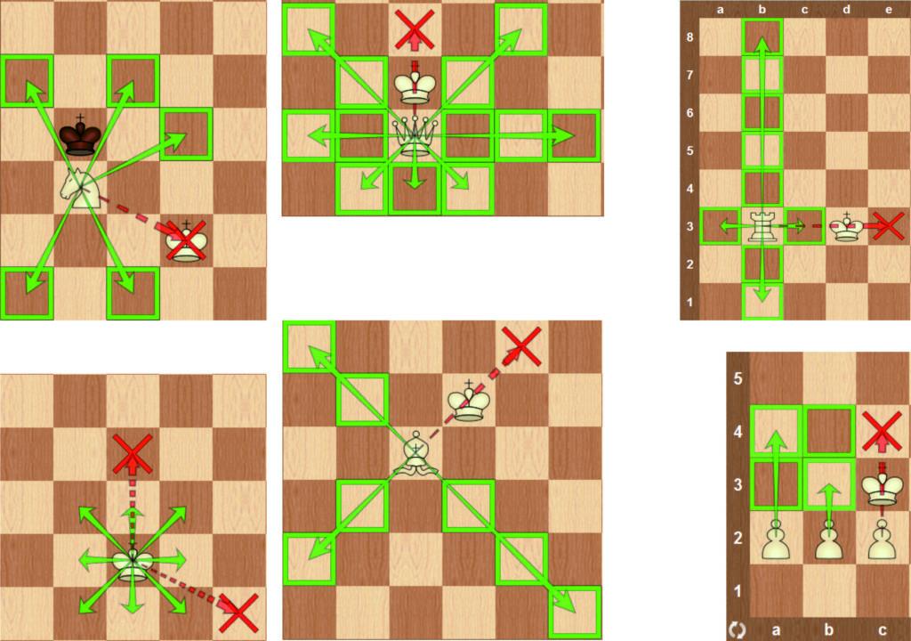 шахматные ходы