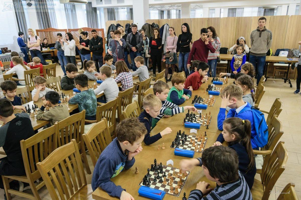 Как организовать турнир по шахматам